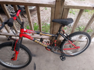 20inch bike for sale 5 speed 20$ firm