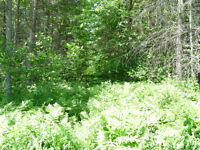 Land For Sale - 234 St Thomas Road, Russell, ON