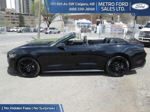 NEW 2017 Mustang GT Convertible Premium PRICED TO SELL