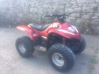 Apache 100cc quad electric & kick stsrt
