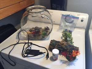 Fish bowl, food, tank heater for beta fish for sale