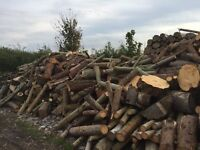 Timber / firewood logs - South Wales area