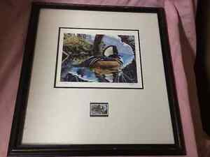 Picture and Stamp - Ducks Unlmtd.