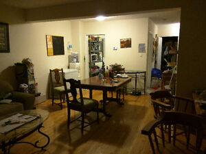 Basement room available for rent in shared household