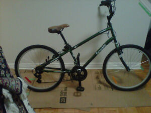"""Women's """"Everyday Travellor"""" Bike for Sale-great for shopping"""