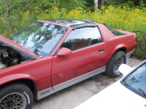 last chance- 86 t top camaro
