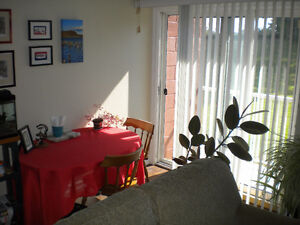 Bachelor Apartment Sublet Available for August and September