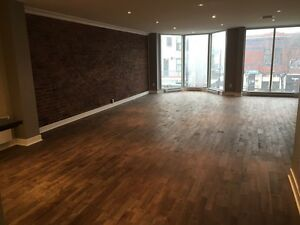 Beautiful 1400 sqft loft style Appartment in Outremont-Mile End