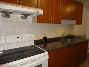 Spacious basement one bedroom apartment near Square One for rent