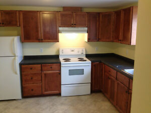 Large 2 bedroom Apt Newly Renovated