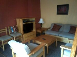 Panorama Ski Resort  1 bedroom loft condo for rent