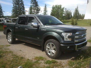 2015 Ford F-150 SuperCrew Platinum Pickup Truck
