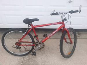 Adult / youth bike