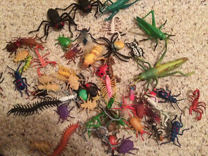 3 Boxes of Bugs