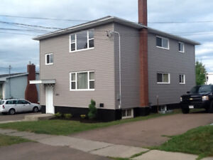 Nicely renovated 1 bedroom basement apartment. All incl.