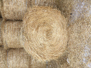4X5 Round Bales of Wheat Straw for Sale