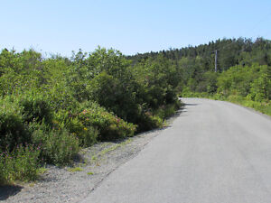 155-161 COUNTRY PATH ROAD - LONG POND, CBS St. John's Newfoundland image 8