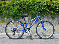 Norco Mountaineer ( VERY SMALL Adult / Youth Bike )