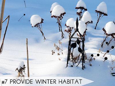 Erschaffe Winterquartiere