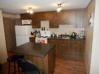 2 Bedroom Basement suite in Sutherland-incl utilities,wifi,cable