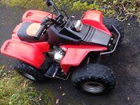 Kazuma 50cc quad bike