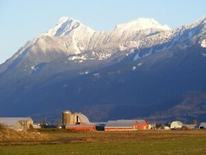 We have jobs in Chilliwack!
