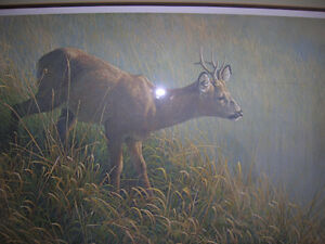 Robert Bateman L.E. Print Mourning Dew- Roe Deer Kingston Kingston Area image 2