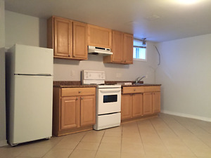 LARGE  1 BEDROOM BASEMENT APARTMENT AT COLLEGE AND DOVERCOURT