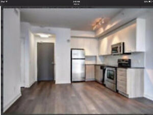 Looking to find a basement apartment to rent! IN RIVERVIEW