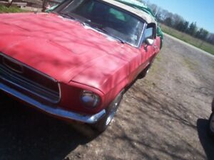 1968 Ford Mustang convertible project $7500. obo