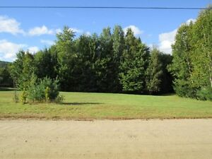 Beautiful 1 acre lot bordered on Lake Champagne