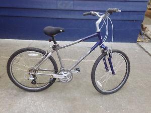 Men's Giant Sedona bike