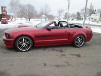 2008 Ford Mustang  GT / CS ...STANDARD...TRADE WELCOME