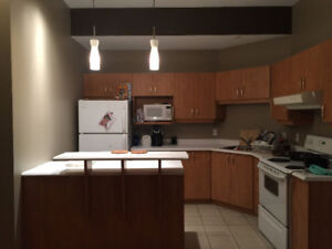 2 BEDROOMS APT AVAILABLE NOW 4 MIN DRIVE TO DOWNTOWN OTTAWA