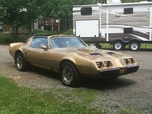 very nice 1979 formula firebird t tops   may trade