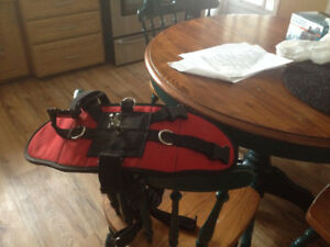 dog sulky with harness used 5 time  harness is  adjustable