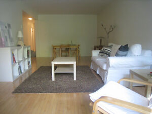 Ideal 2 Bedroom Apartment Across the street from McGill