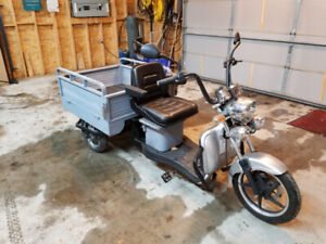 Custom E-Trike Mini Pickup