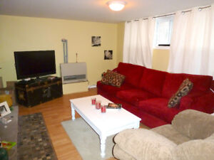 Apt with lake views in Ferris for quiet, responsible person.