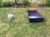 Rabbit / Hamster / Guinea Pig Cage with Playpen