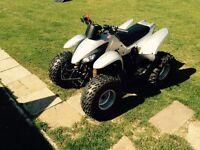 Apache 100 quad