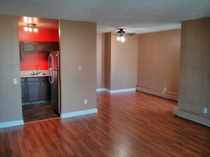 2 Bed 2 Bath Downtown for Rent
