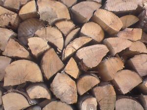 FIREWOOD Available for Pick Up