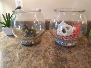 2 fish bowls