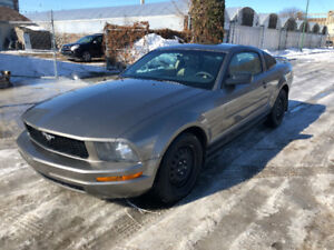 2005 Ford Mustang Coupe (2 door) $500$ Gift Card