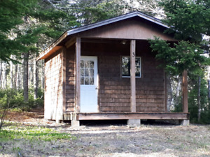 Cabins and Trailer for rent