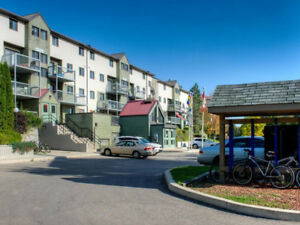 2019 Dec - April Sublet - Very close to UW campus and food plaza