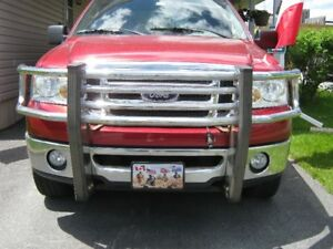 Grille Guard/Brush Guard for FORD F150 $150 OBO