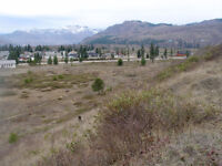 6 ACRES FLAT PRIME BUILDING LAND IN BARRIERE B.C.