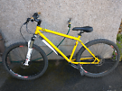Genesis ioid mountain bike